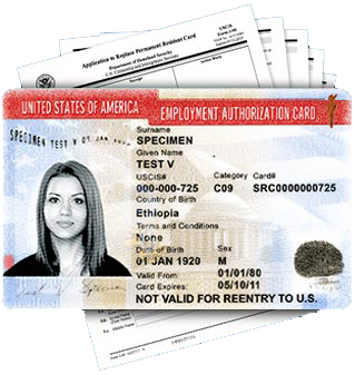 Employment Authorization Card Renewal (EAD)